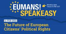 european citizens democratic rights